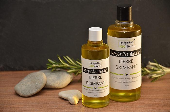 Macérât huileux Lierre Grimpant - Le Domaine des 1000 plantes