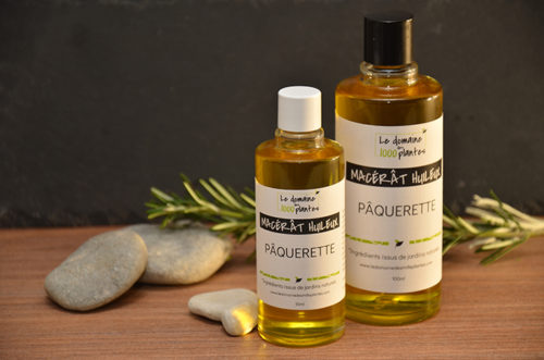 Macérât huileux Pâquerette - Le Domaine des 1000 plantes