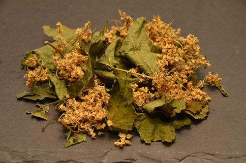 Tisane Respiration - La Cagoyée - Le domaine des 1000 plantes